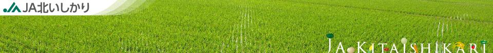 組合員のみなさまへ 営農と生活の安定・発展を 消費者のみなさまへ 安全・安心な食料供給を 活力みなぎるJAへ JA北いしかり